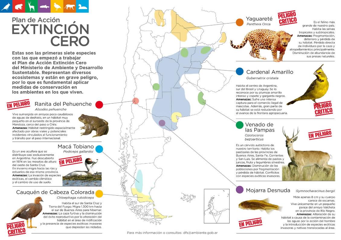 folleto-extincion-interior